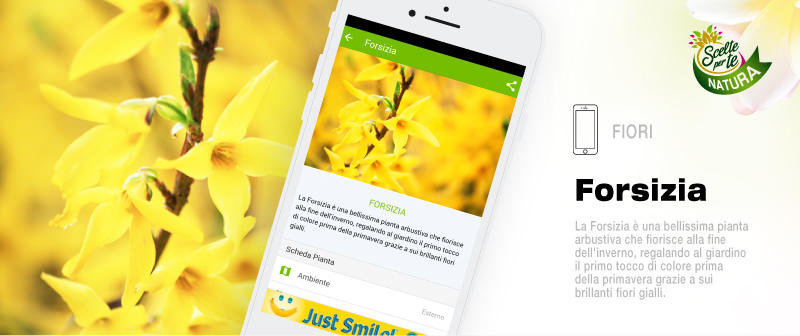 Pagina-Scelte-per-Te-App_08.jpg