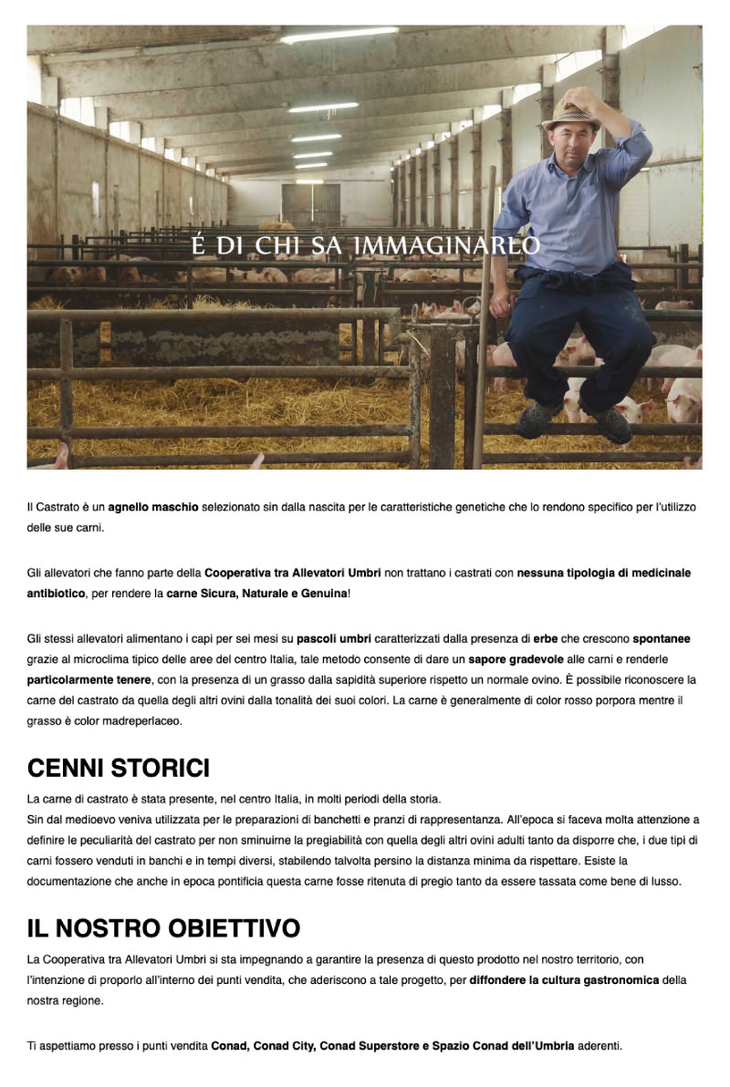 Pagina-Allevatori-Umbri_07.jpg