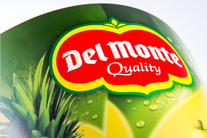 Pagina-DelMonte-03.jpg