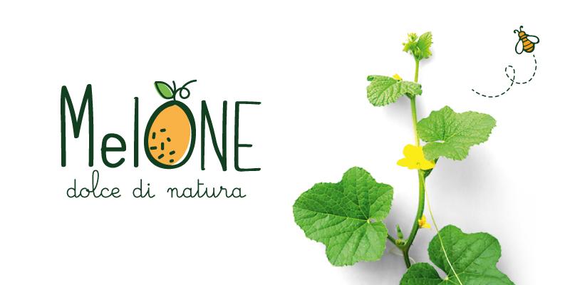 Pagina-Melone-e-Ananas_01.jpg