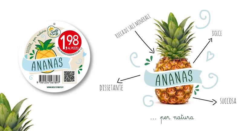 Pagina-Melone-e-Ananas_05.jpg