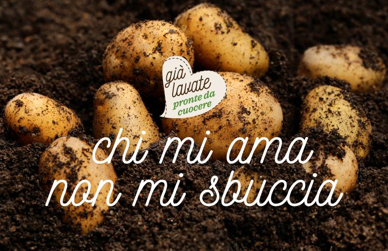 Pagina-Patatuccia_06-1.jpg