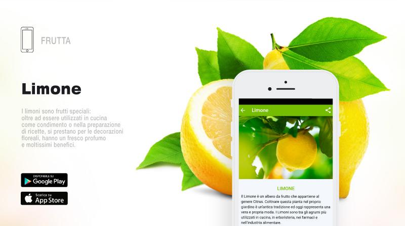 Pagina-Scelte-per-Te-App_02.jpg