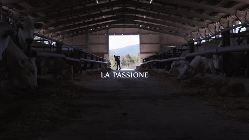 Pagina-Video-Allevatori-Umbri_04.jpg