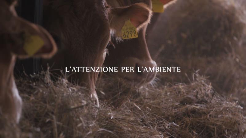 Pagina-Video-Allevatori-Umbri_05.jpg