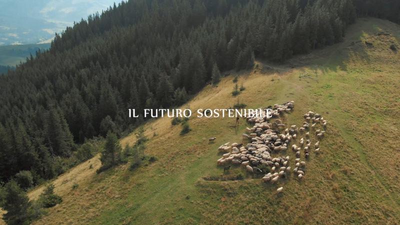 Pagina-Video-Allevatori-Umbri_10.jpg