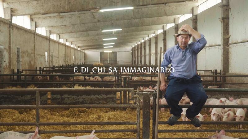 Pagina-Video-Allevatori-Umbri_11.jpg