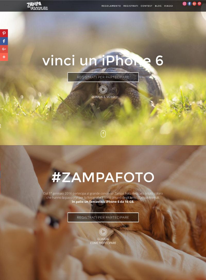 Pagina-Zampa-foto_03.jpg