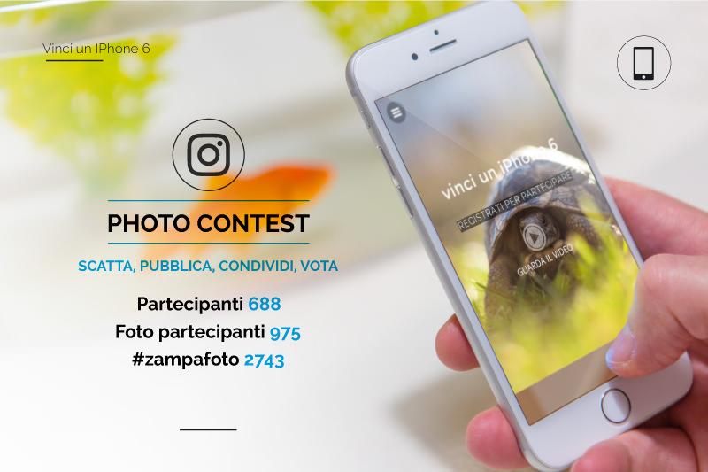 Pagina-Zampa-foto_041.jpg